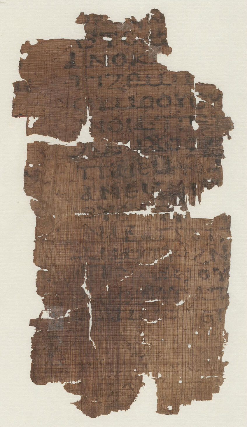 K7244Verso Papyrusfragment